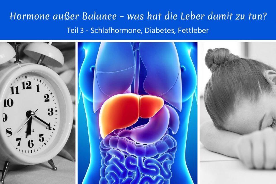 Hormone außer Balance – was hat die Leber damit zu tun? Teil 3 – Schlafhormone, Diabetes, Fettleber