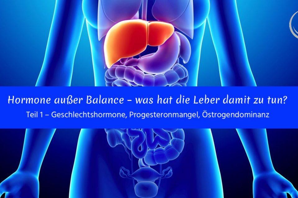 Hormone außer Balance – was hat die Leber damit zu tun? Teil 1 – Geschlechtshormone, Progesteronmangel, Östrogendominanz