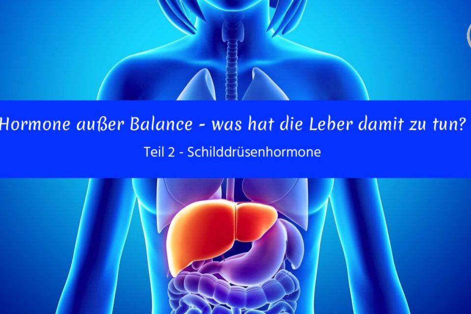 Hormone außer Balance – was hat die Leber damit zu tun? Teil 2 – Schilddrüsenhormone