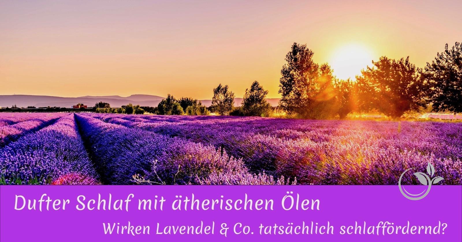 Dufter Schlaf mit ätherischen Ölen – Wirken Lavendel & Co. tatsächlich schlaffördernd?